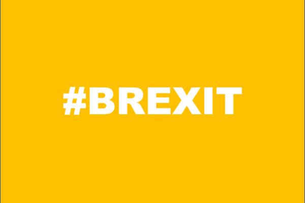 Brexit : Armateurs de France fait le point sur l'évolution de la situation pour le Shipping