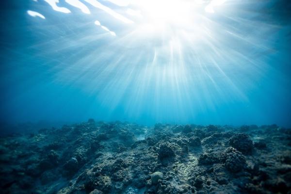 Le GIEC dévoile son rapport spécial « Océan & Cryosphère »
